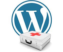 WordPress Logo mit Erste-Hilfe-Koffer